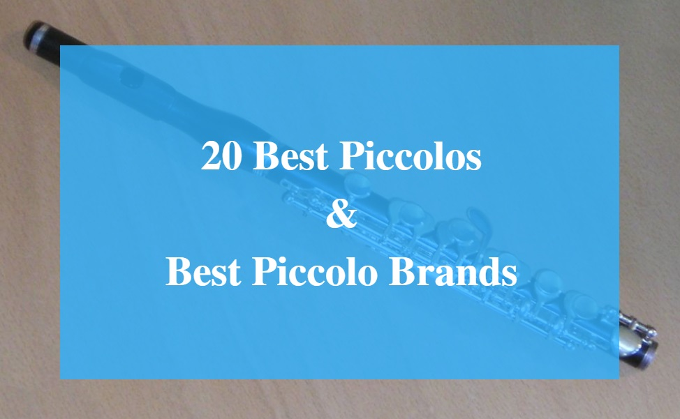 Best Piccolo & Best Piccolo Brands