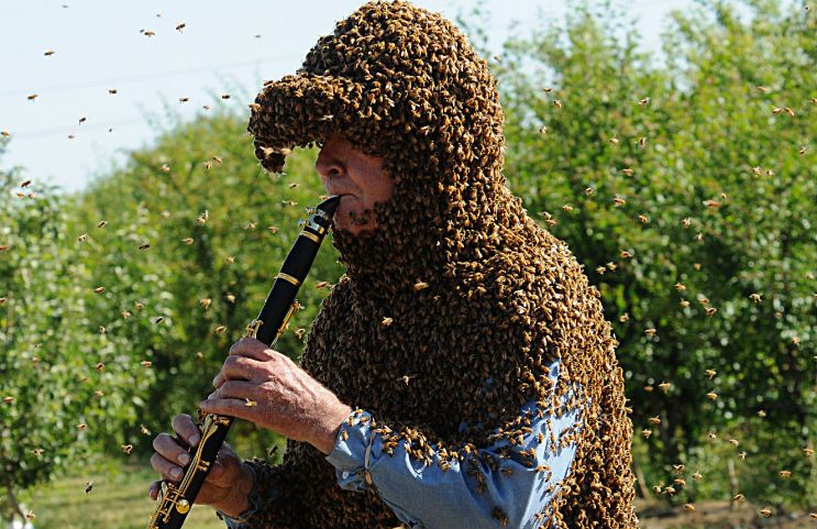 Norman Gary plays clarinet covered in bees