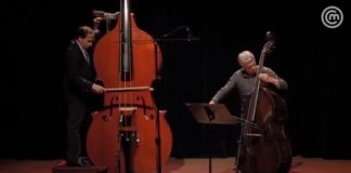 Octobass The Largest String Instrument Ever Invented