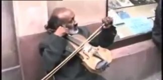 Street Musician Plays Viola In Most Unconventional Way