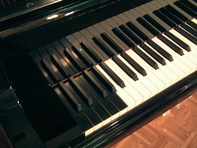 Bosendorfer extra keys