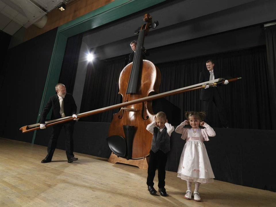 worlds biggest violin