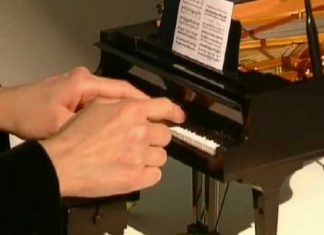 The Tiniest Grand Piano Ever