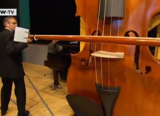 world's largest playable violin