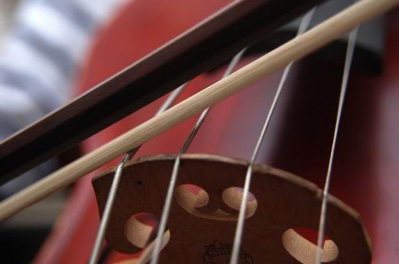 Violin Viola String