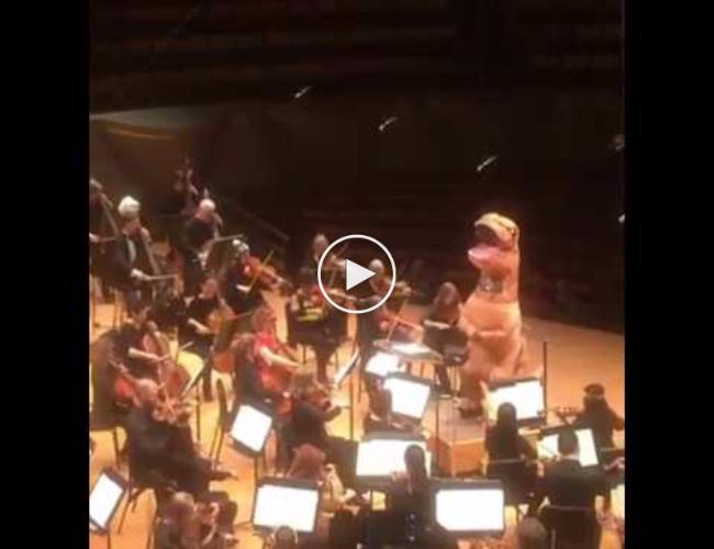 Dinasour Conductor