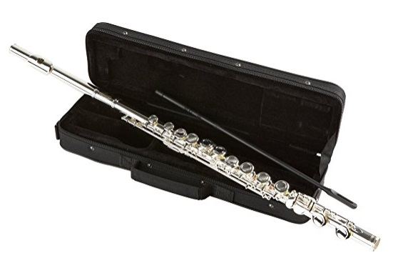 Allora AAFL 229 Student Series Flute Model