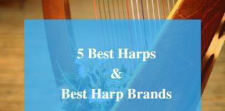 Best Harp & Best Harp Brands