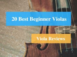 Best Beginner Viola & Viola Reviews