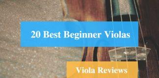 Best Beginner Viola & Viola Reviews