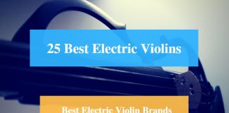 Best Electric Violin & Best Electric Violin Brands