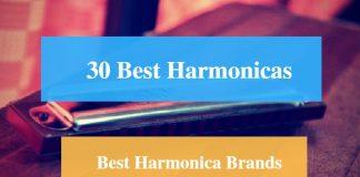 Best Harmonica & Best Harmonica Brands