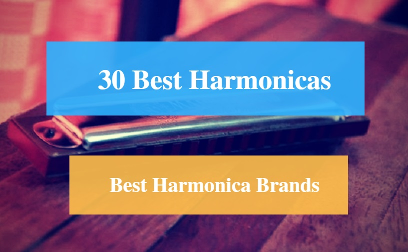 30 Best Harmonica Reviews 2019 – Best Harmonica Brands - CMUSE