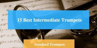 Best Intermediate Trumpet & Standard Trumpet