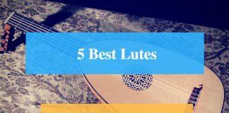 Best Lute & Best Lute Brands
