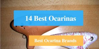 Best Ocarina & Best Ocarina Brands