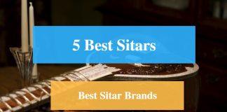 Best Sitar & Best Sitar Brands
