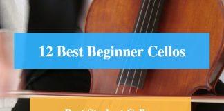 Best Beginner Cello, Best Student Cello, Best Beginner & Student Cello Brands