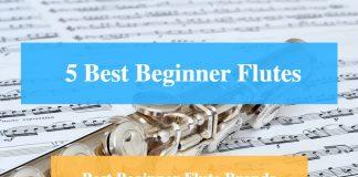 Best Beginner Flute & Best Beginner Flute Brands