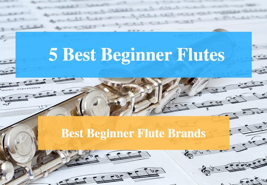 5 best beginner flute reviews 2018 flute instrument for beginners