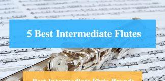 Best Intermediate Flute & Best Intermediate Flute Brands