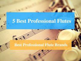 Best Professional Flute & Best Professional Flute Brands