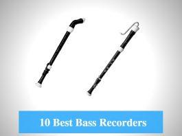 Best Bass Recorder & Best Bass Recorder Brands