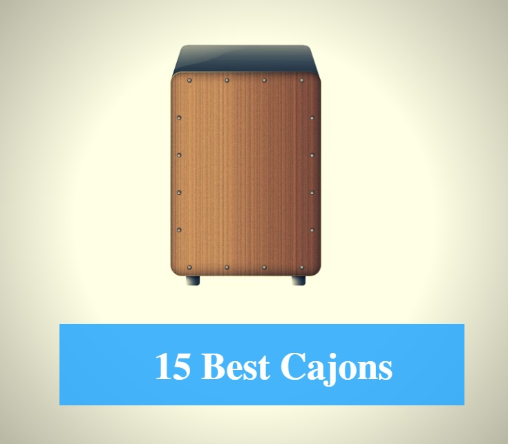 15 Best Cajon Reviews 2018 - Best Cajon Brands