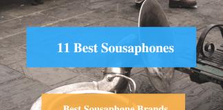 Best Sousaphone & Best Sousaphone Brands