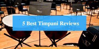 Best Timpani & Best Timpani Brands