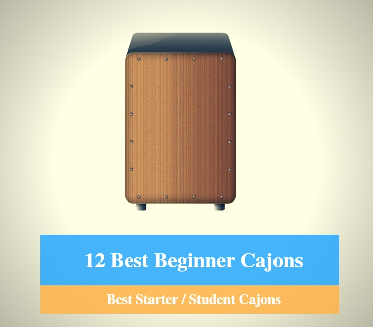 Best Cajon for Beginners, Best Starter Cajon & Best Student Cajon