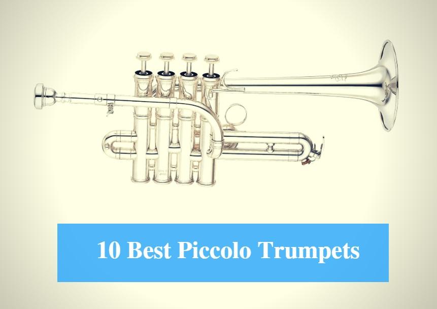 Goede 10 Best Piccolo Trumpet Reviews 2019 - Best Piccolo Trumpet Brands OQ-76