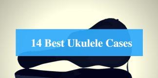 Best Ukulele Case & Best Ukulele Gig Bag