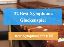 Best Xylophone, Best Glockenspiel & Best Xylophone Brands