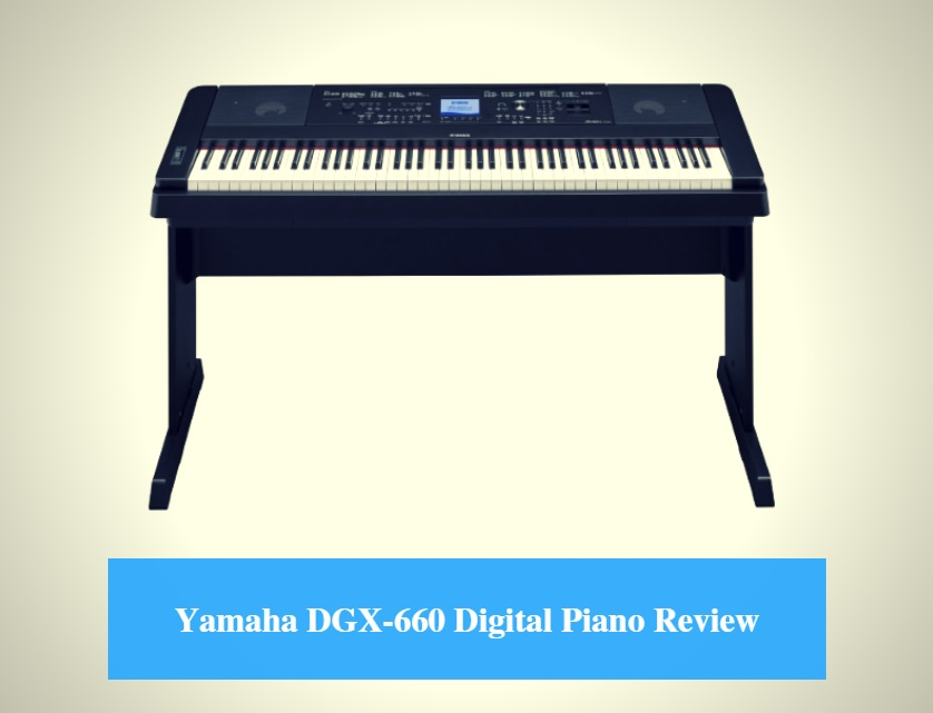 yamaha dgx 660 digital piano review 2018 cmuse. Black Bedroom Furniture Sets. Home Design Ideas
