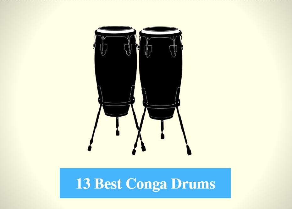 Best Conga Drum & Best Conga Drum Brands