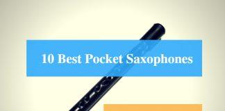 Best Pocket Saxophone, Best Xaphoon, Best Pocket Saxophone Brands