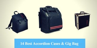 Best Accordion Case, Best Accordion Gig Bag & Best Accordion Case Brands
