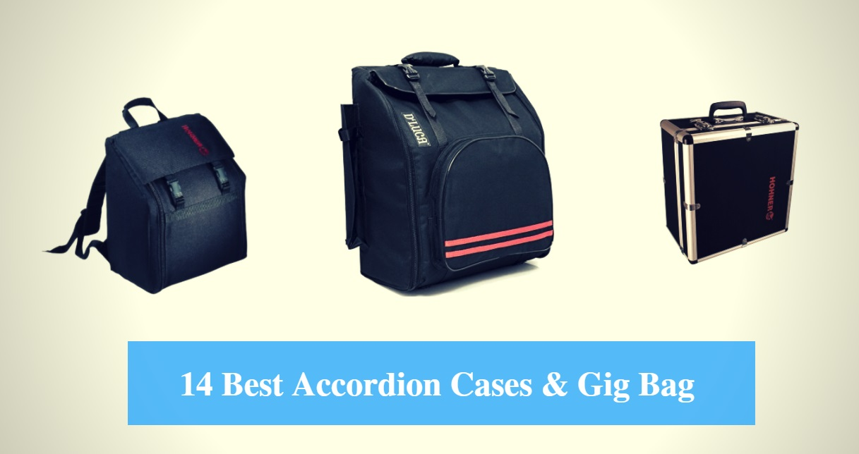 Best Accordion Case, Best Accordion Gig Bag & Best Accordion Case Brands
