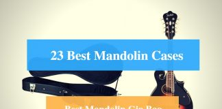Best Mandolin Case, Best Mandolin Gig Bag & Best Mandolin Case Brands