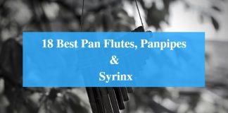Best Pan Flute Brands, Best Pan Flute for Beginners, Best Panpipe & Greatest Syrinx