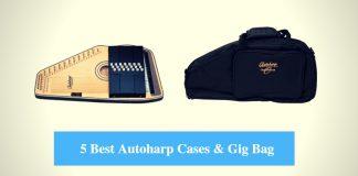 Best Autoharp Case, Best Autoharp Gig Bag & Best Autoharp Case Brands