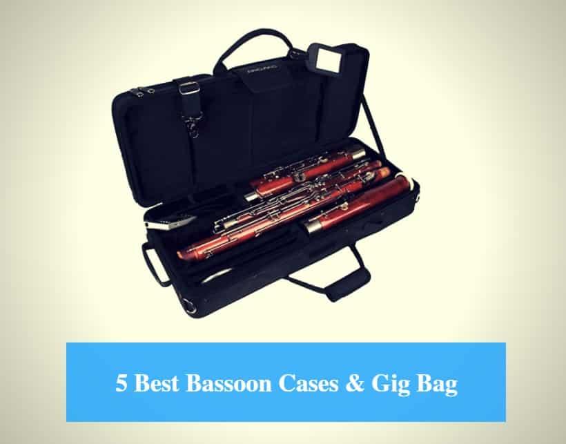 5 best bassoon case reviews 2019 best bassoon gig bag cmuse. Black Bedroom Furniture Sets. Home Design Ideas