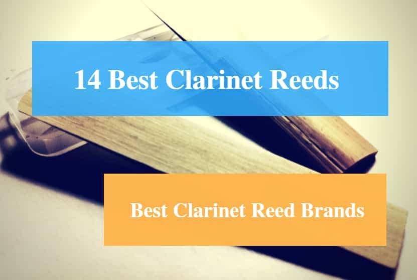 Best Clarinet Reeds, Best Clarinet for Beginners and Advanced Players, Best Clarinet Reed Brands