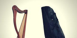 Best Harp Case, Best Harp Gig Bag & Best Harp Case Brands