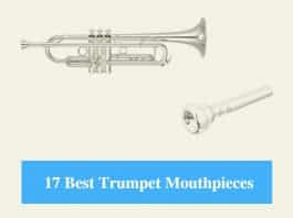 Best Trumpet Mouthpiece & Best Trumpet Mouthpiece for High Notes, Jazz and Beginners