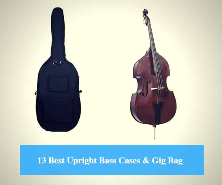 b1b65a5848c3 13 Best Upright Bass Case Reviews 2019 (Best Double Bass Gig Bag ...
