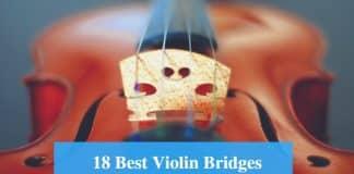 Best Violin Bridge & Best Violin Bridge Brands
