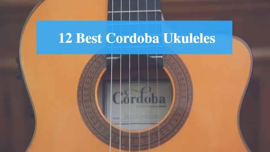 Best Cordoba Ukulele