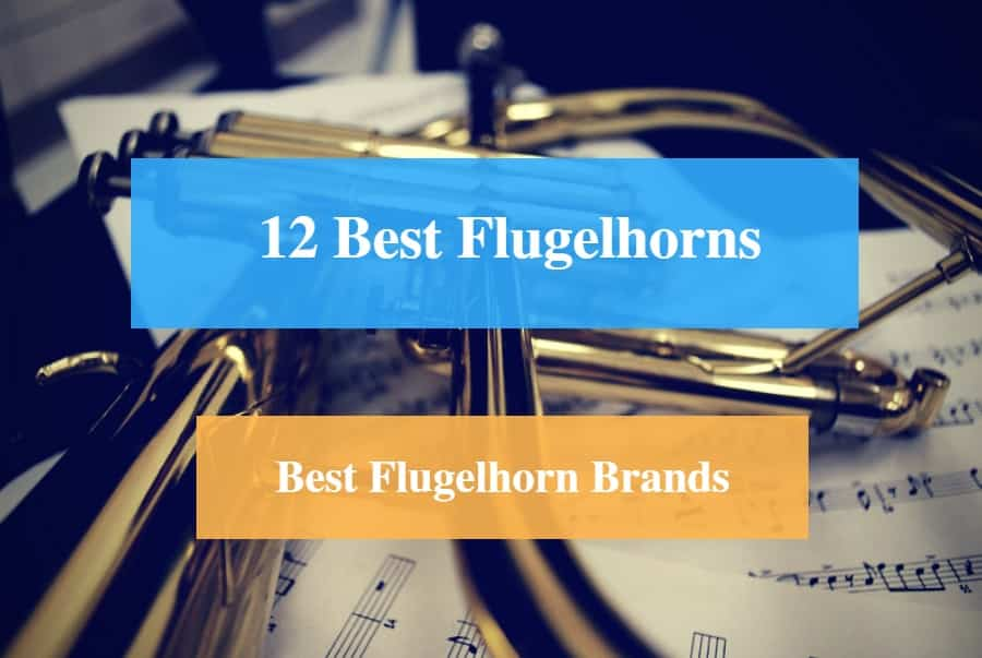 12 Best Flugelhorn Reviews 2019 – Best Flugelhorn Brands - CMUSE